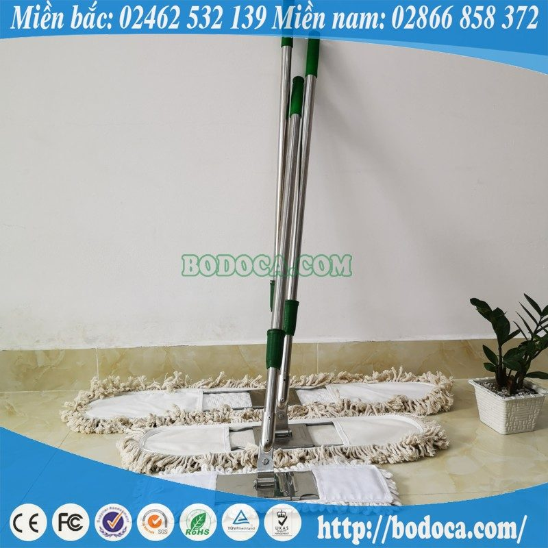 Cây lau bụi Bodoca 45cm